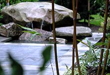 Magnolia rock&water feature