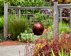 The fountain is the focal point for this small West Seattle front garden