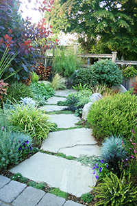 Colorful planting and a stone pathway lead the eye down the through this garden.