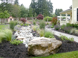 High Cascade boulders, many from the property, define the stream bed. Cutting flowers from the adjoining bed will be will be gathered by the kitchen staff to decorate the house and patios for events
