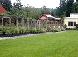 Perennials and grasses now line the walk through the gardens down to the house and barns